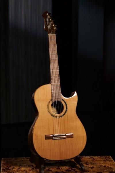 ORTEGA Ben Woods Signature Guitar Reversed Headstock Nylon 6 String + Ben Woods Gigbag - Fishman-ORTEGA Clasica Blend System mit XLR Output (FLAMETAL-TWO)