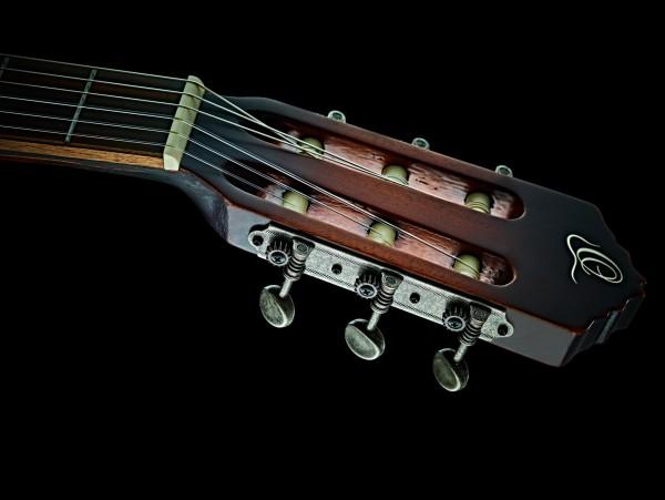 ORTEGA The Private Room Nylon String Guitar (DSSUITE-C/E)