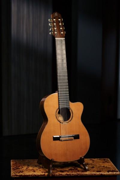 ORTEGA Performer Series Classical Guitar 4/4 8 String - Natural Cedar + Bag (RCE159-8)