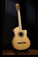 ORTEGA Thomas Zwijsen Signature Classic Guitar 6 String - + Softcase (TZSM-3)